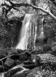 New Zealand, Matai Falls stock photos