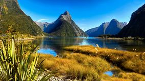 New Zealand Milford Sound. Milford Sound and Mitre Peak, one of New Zealand`s most important tourist attractions Royalty Free Stock Photo
