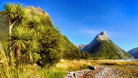 New Zealand, Milford Sound, Scenic Mountains Landscape. A scenic fjord - Milford Sound, Fiordland National Park. South Island, New Zeland. New Zealand`s most Royalty Free Stock Images