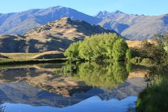 New Zealand mountain lake Stock Images