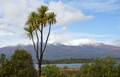 New zealand, mt. tongariro Royalty Free Stock Image