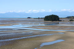 New Zealand mud flats Royalty Free Stock Photography