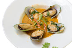 New Zealand Mussel Steamed with Curry Coconut Milk. Royalty Free Stock Photography