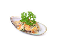 New zealand mussels baked with cheese Stock Image