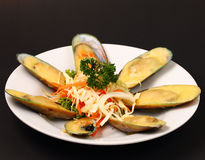 New Zealand mussels Royalty Free Stock Photos