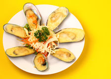 New Zealand mussels Stock Photography