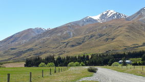 New Zealand nature Royalty Free Stock Images
