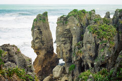New Zealand pancake rocks Stock Image