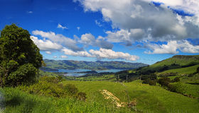 New Zealand panorama Landscape Royalty Free Stock Image
