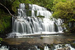 New zealand, purakaunui falls Royalty Free Stock Images
