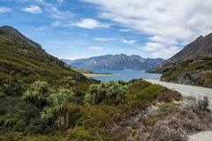 New Zealand road trip: Haast Pass Highway to Wanaka Stock Image