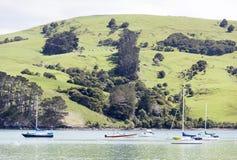 New Zealand`s French Bay Stock Image