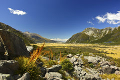 New Zealand's Hooker Valley View Stock Photo