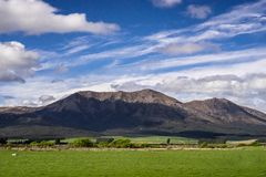 New Zealand scenery mountains and green grass field. With cloudy blue sky over the mountain Royalty Free Stock Photo