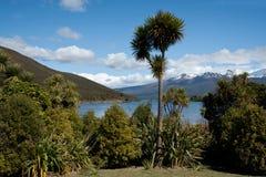 New Zealand scenic landscape. Royalty Free Stock Image