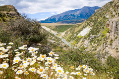 New Zealand scenic landscape Royalty Free Stock Photos