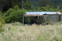 New Zealand shed Stock Photo