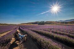 Peaceful image of girl relaxes in natural meadow farm stock photo