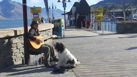 Street performer and his pet dog duo singing in Queenstown stock photo