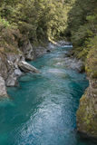 A New Zealand stream runs through a gorge Royalty Free Stock Photography