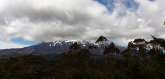 New Zealand. Taken on the North Island of New Zealand, with a snow capped mountain in the background Royalty Free Stock Images