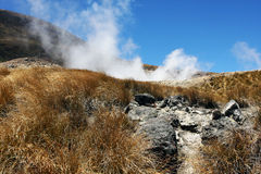 New Zealand. Taken on the North Island of New Zealand, steam from seismic activity can be seen in the distance Royalty Free Stock Photo