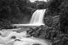 New Zealand, Tawhai Falls Royalty Free Stock Photo