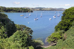 New Zealand Travel Photos - Bay of Islands Royalty Free Stock Photo