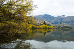 New Zealand view. Royalty Free Stock Images