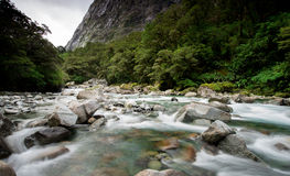 New Zealand view. Stock Image
