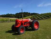 New Zealand: vineyard with red tractor h Royalty Free Stock Images