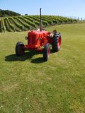 New Zealand: vineyard with red tractor v Royalty Free Stock Photos