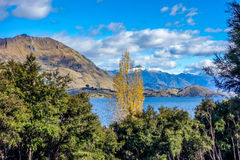 New Zealand - Wanaka Lake Stock Photos