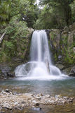 New Zealand waterfall. Waiau water fall,coromandel peninsula,New Zealand royalty free stock photo