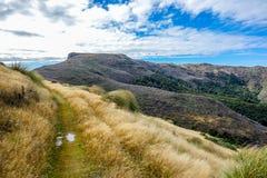New Zealand 58 Royalty Free Stock Photos