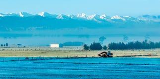 New Zealand Winter Framland Stock Images