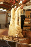New Zealand wool Stock Photos