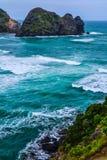 Piha Beach with Lion Rock, New Zealand royalty free stock image