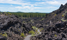 Free Newberry National Volcanic Monument Stock Images - 97249304