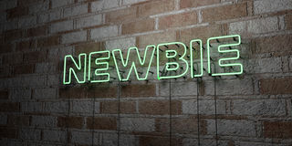 NEWBIE - Glowing Neon Sign on stonework wall - 3D rendered royalty free stock illustration Stock Photo