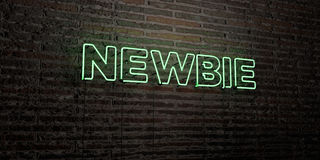 NEWBIE -Realistic Neon Sign on Brick Wall background - 3D rendered royalty free stock image Stock Images