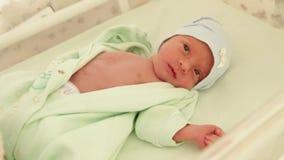 Newborn в первых днях жизни видеоматериал