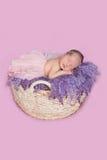 Newborn девушка в юбке Стоковые Фотографии RF