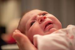 Newborn младенец будучи придержанным в руке стоковое изображение rf