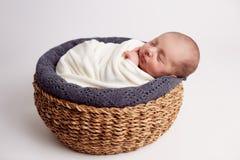Newborn младенец спать на мехе в корзине стоковое изображение