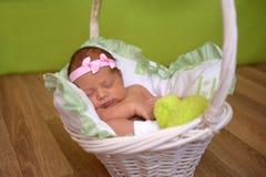 Newborn младенец спит сладостно в корзине стоковые фотографии rf