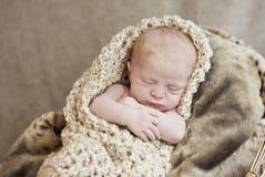 Newborn младенец в одеяле Стоковые Фотографии RF