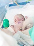 Newborn младенец в больнице Стоковое фото RF