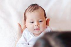 Newborn младенец в оружиях матери, взгляд сверху стоковое изображение rf