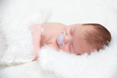 Newborn младенец завитый вверх по спать Стоковые Фотографии RF